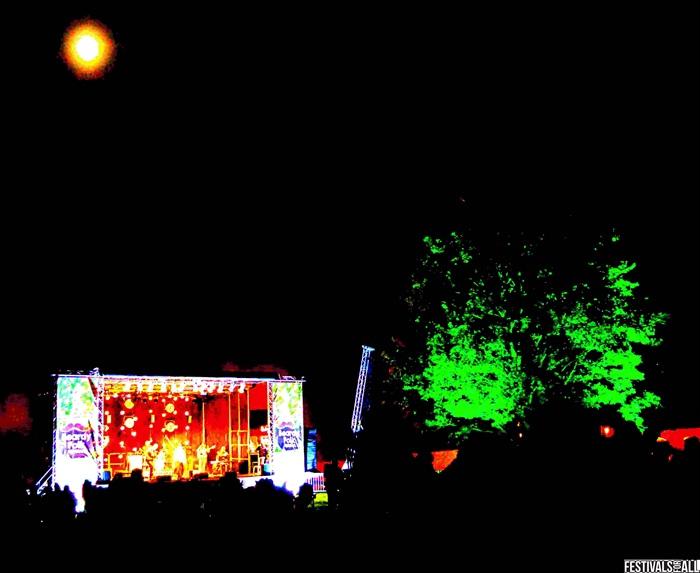 Beardy Folk Festival 2021