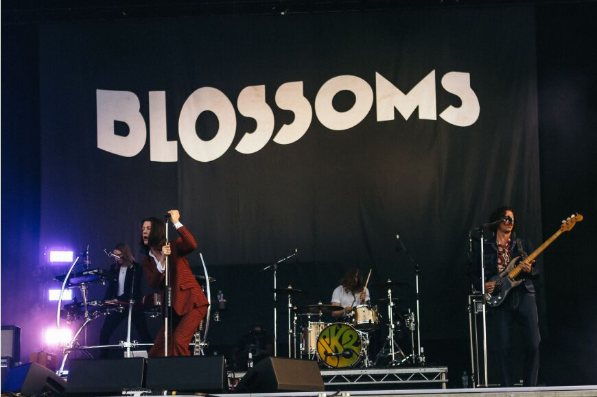 Blossoms at Community Festival 2019