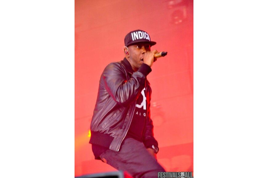 Dizzee Rascal at Evolution 2012